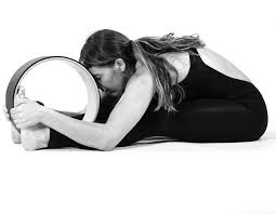 Yoga Wheel Practice
